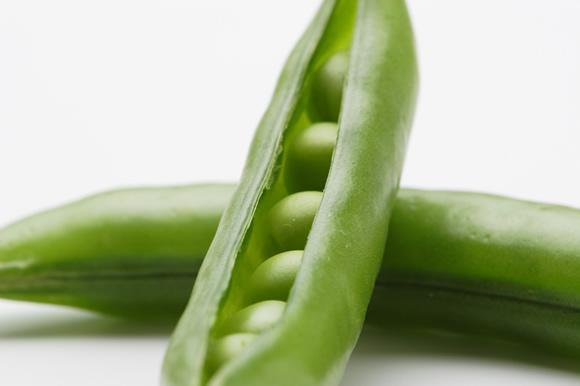 季節毎にバラエティ豊かな味の濃い野菜、珍しい野菜が届くらでぃっしゅぼーやのぱれっと
