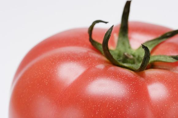 濃厚なトマト