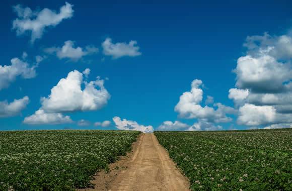 テレビで話題のオイシックスで健康野菜生活!生産地・生産者が分かるので安心