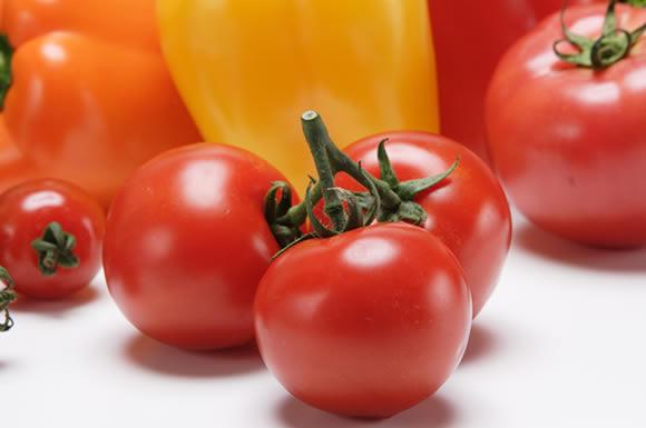 トマトたちへ