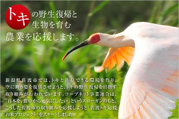 コープデリ 佐渡トキ